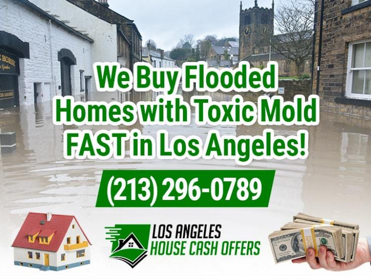 los angeles water damage and mold